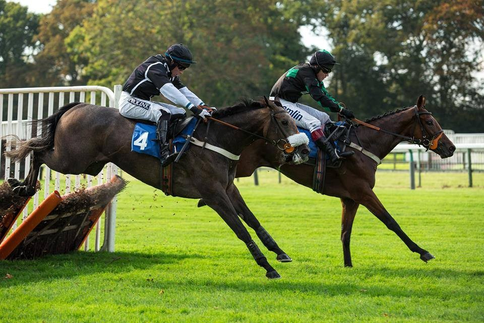 The Wallace Line Winning At Fontwell 03/10/14 | Syndicate Racehorse Ownership - Diamond Racing