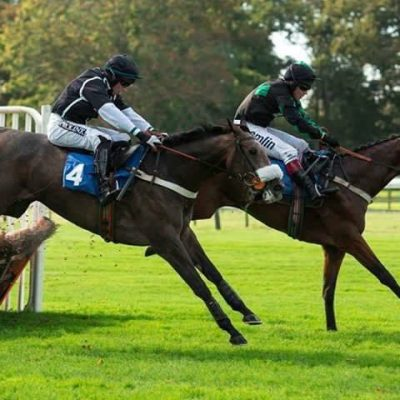 fence jumping | Syndicate Racehorse Ownership - Diamond Racing