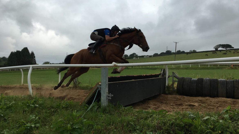 Dalaman Schooling 21st July 2016 | Syndicate Racehorse Ownership - Diamond Racing
