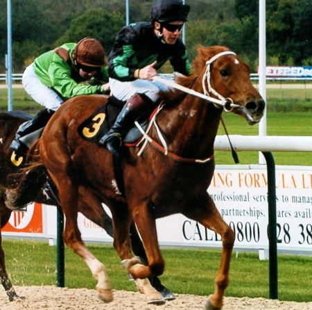 History of diamond racing | Syndicate Racehorse Ownership - Diamond Racing