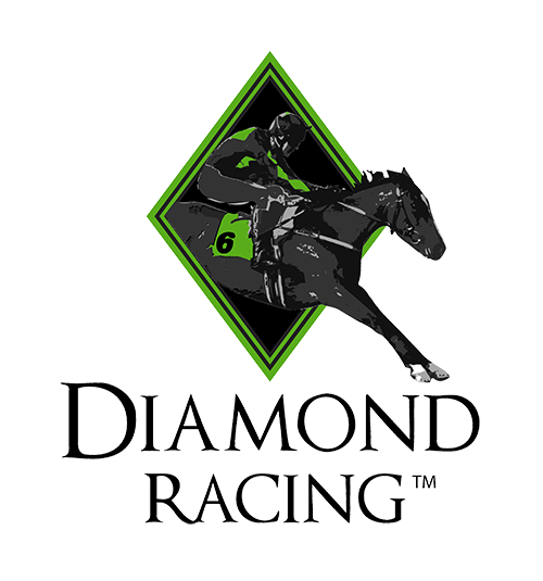 Logo | Syndicate Racehorse Ownership - Diamond Racing